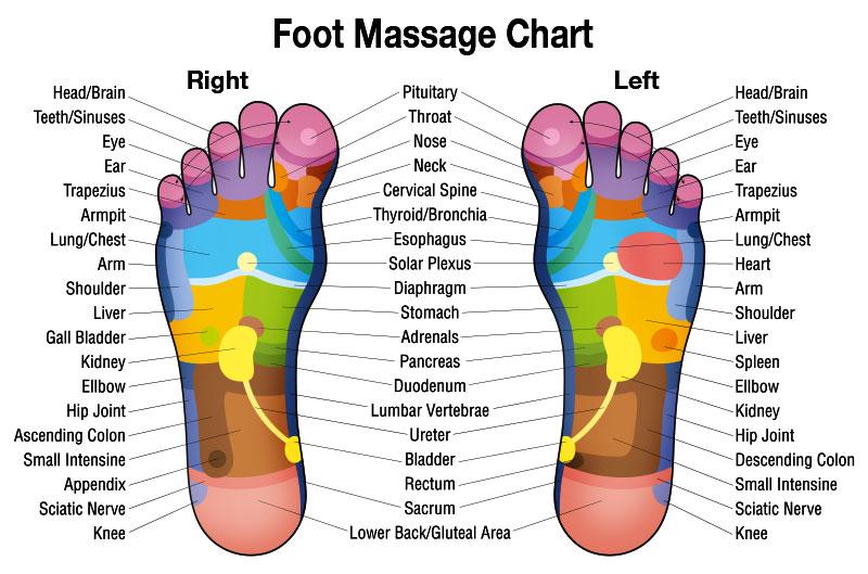 sujok feet diagram
