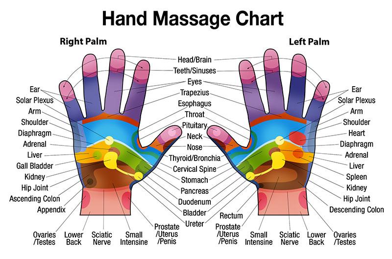sujok hands diagram